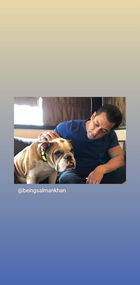 SALMAN KHAN SHARED PICS WITH MOST LOVING PET