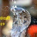 Nag Panchami 2019 Date Time Whatsapp DP SMS Wallpaper